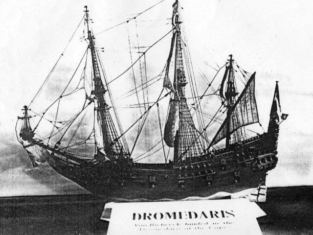 Дромедарис