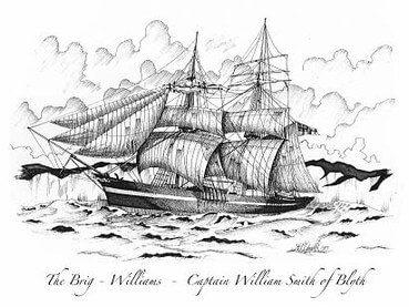 Парусник Williams
